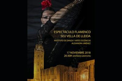 Espectacle de Flamenc a la Seu Vella