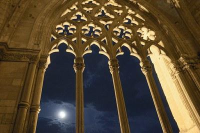 """Imatge del event Nits de Lluna Plena al Claustre """"Contes Frescos a la Fresca"""""""