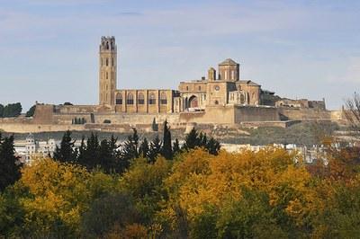 Imatge de la notícia La Seu Vella de Lleida reanuda las visitas guiadas
